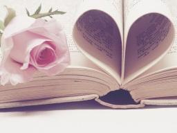 literature-3060241